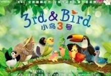 BBC原版动画《小鸟3号》3rd and bird 中英文版全集,宝宝早教儿童教育学习动画片-颜夕夕萌物馆_儿童早教一站就够了