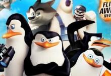 2014儿童动画电影:马达加斯加的企鹅 高清720P 中英双语字幕MP4下载-颜夕夕萌物馆_儿童早教一站就够了