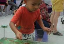 """关于""""捞鱼""""这种小游戏,引发的教育孩子的点滴-颜夕夕萌物馆_儿童早教一站就够了"""